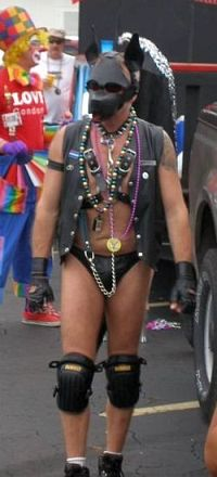 Human puppy at St. Pete Pride Parade