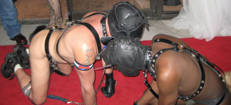 Bondage sex slaves xxx free